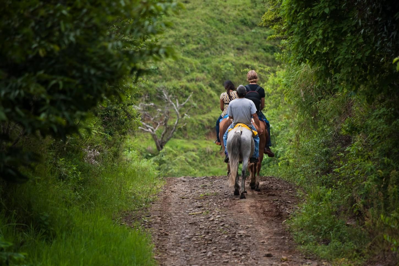 Ga paardrijden in de Turrialbavallei Een ontspannen ritje door een prachtig landschap Kriski Plus