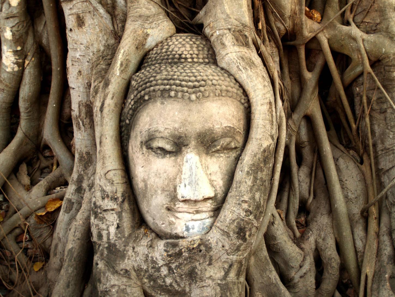 De vele gezichten van Ayutthaya Tempelhoppen in de historische hoofdstad van Siam Kriski Plus