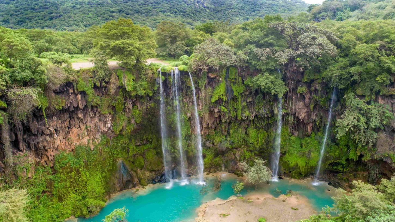De groene natuur van Arabia Felix Wuivende kokospalmen, hagelwitte stranden en weelderig groen Kriski Plus