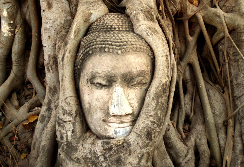 De vele gezichten van Ayutthaya Kriski Plus