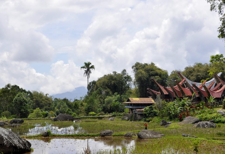 Tongkonan bezoeken bij de Toraja Kriski Plus