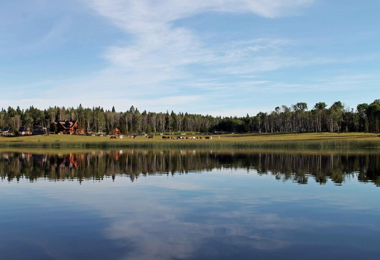 Paardrijden in de Canadese prairie Kriski