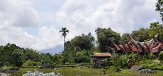 Tongkonan bezoeken bij de Toraja Een rit langs traditionele dorpen in een adembenemend landschap Kriski Plus